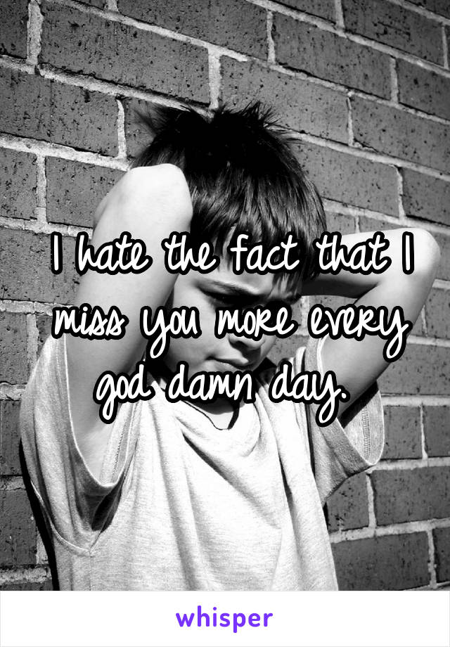 I hate the fact that I miss you more every god damn day.