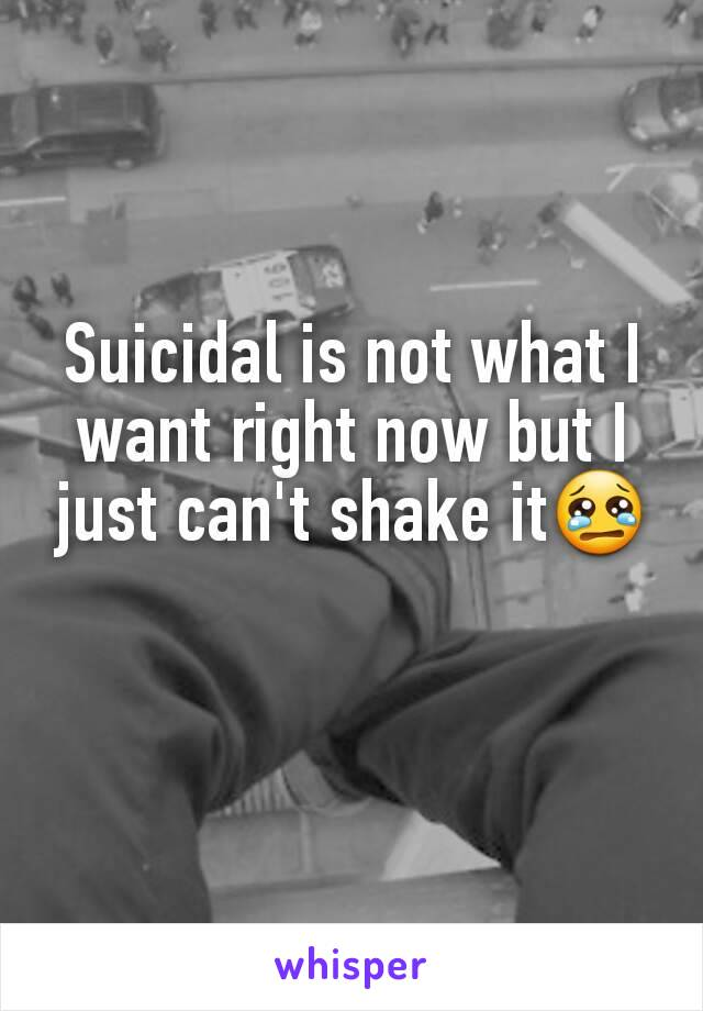 Suicidal is not what I want right now but I just can't shake it😢