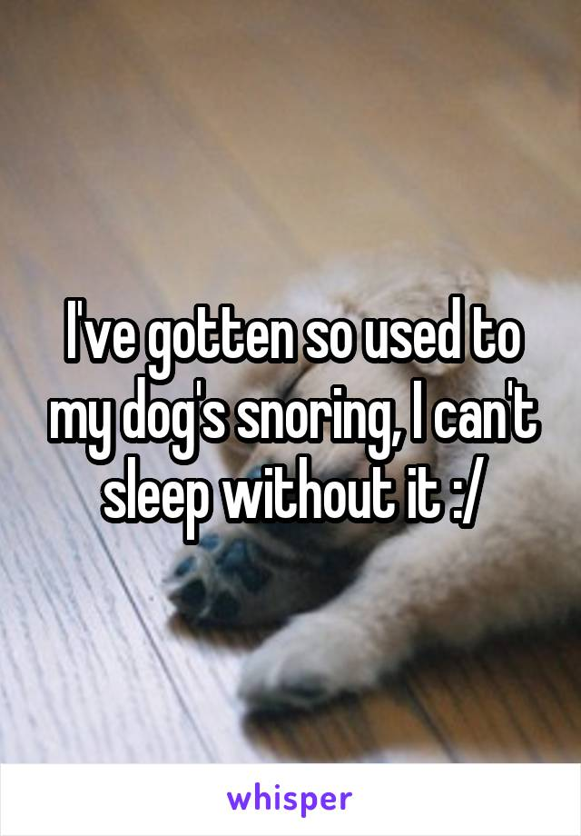 I've gotten so used to my dog's snoring, I can't sleep without it :/