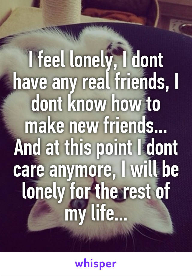 I feel lonely, I dont have any real friends, I dont know how to make new friends... And at this point I dont care anymore, I will be lonely for the rest of my life...