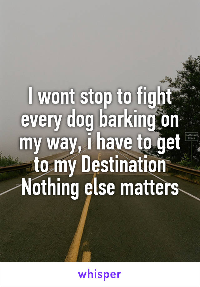 I wont stop to fight every dog barking on my way, i have to get to my Destination Nothing else matters