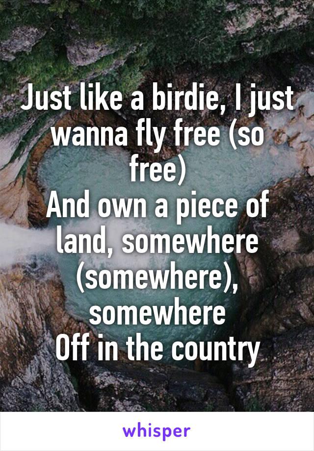 free like birdie