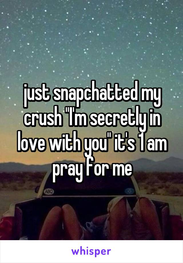 just snapchatted my crush ''I'm secretly in love with you'' it's 1 am pray for me