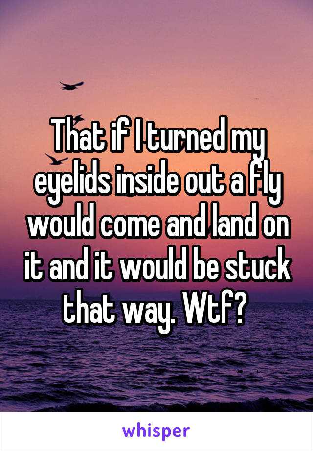 That if I turned my eyelids inside out a fly would come and land on it and it would be stuck that way. Wtf?