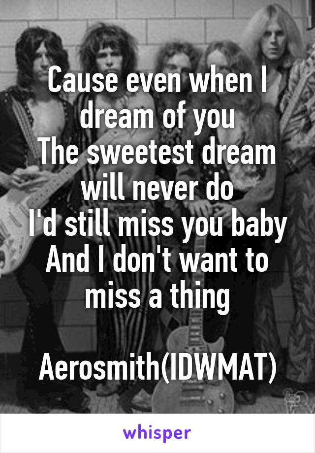 Cause even when I dream of you The sweetest dream will never do I'd still miss you baby And I don't want to miss a thing  Aerosmith(IDWMAT)