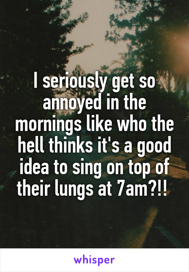 I seriously get so annoyed in the mornings like who the hell thinks it's a good idea to sing on top of their lungs at 7am?!!