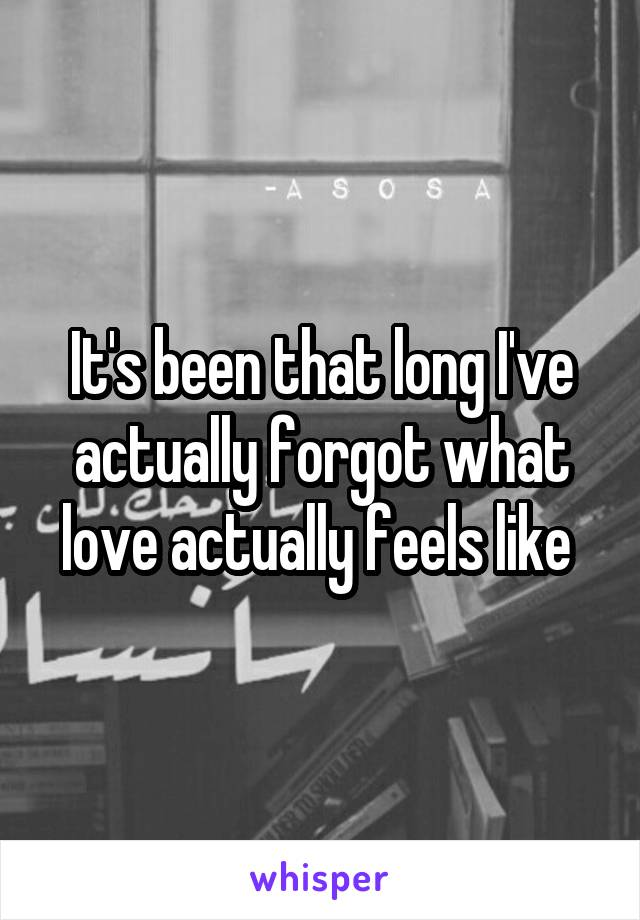 It's been that long I've actually forgot what love actually feels like