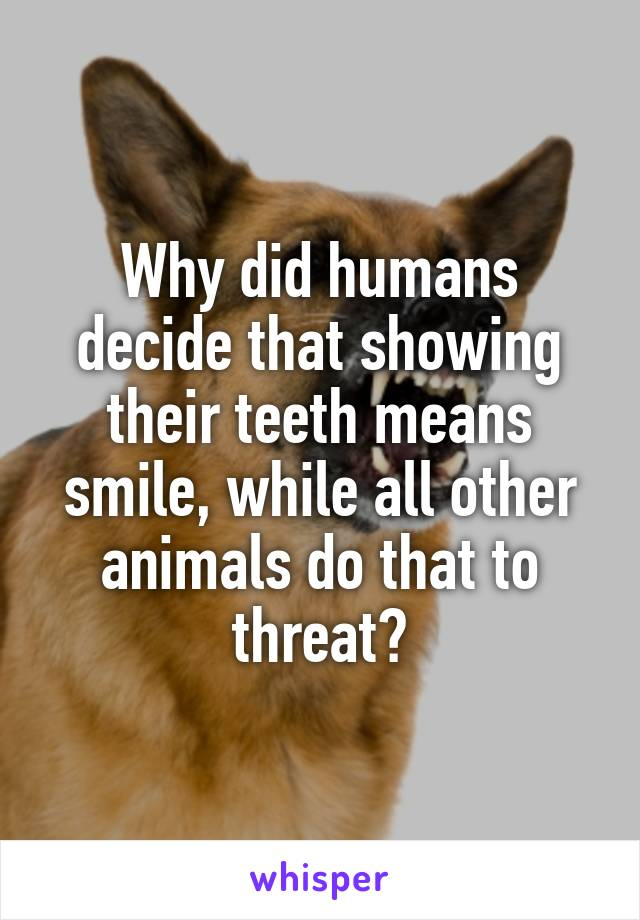 Why did humans decide that showing their teeth means smile, while all other animals do that to threat?