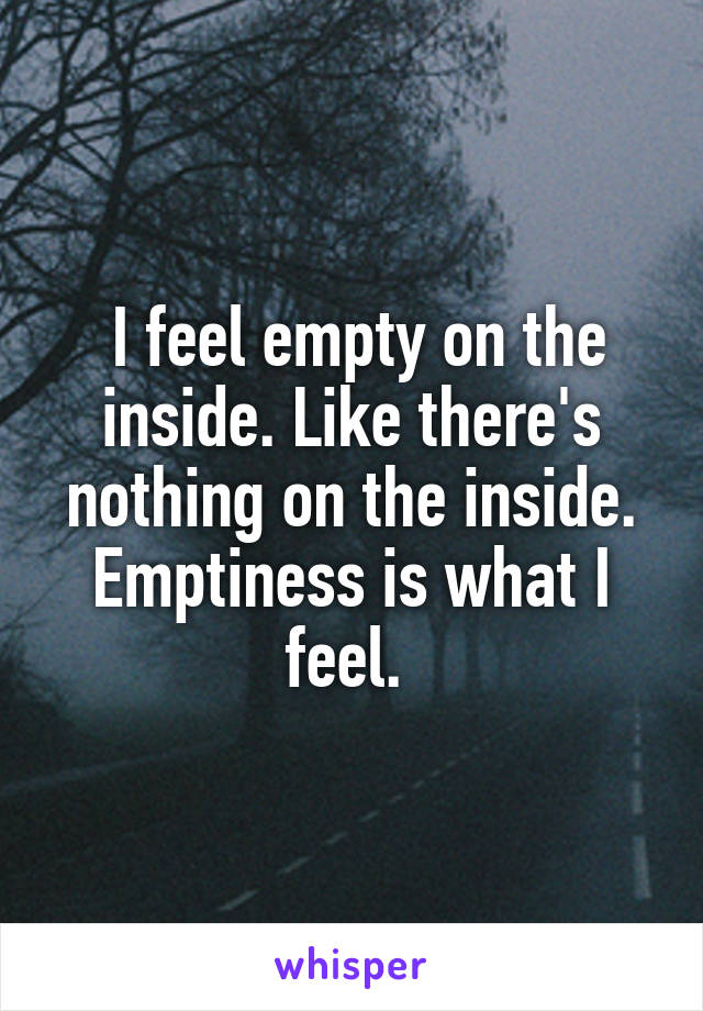 I feel empty on the inside. Like there's nothing on the inside. Emptiness is what I feel.