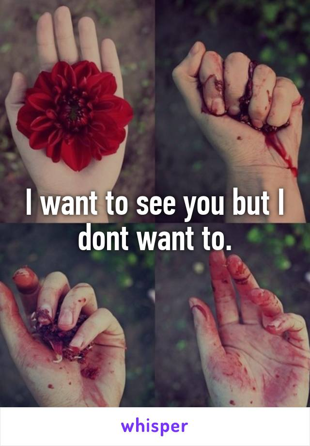 I want to see you but I dont want to.