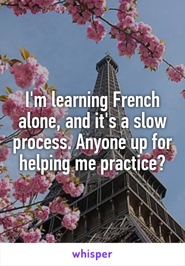 I'm learning French alone, and it's a slow process. Anyone up for helping me practice?