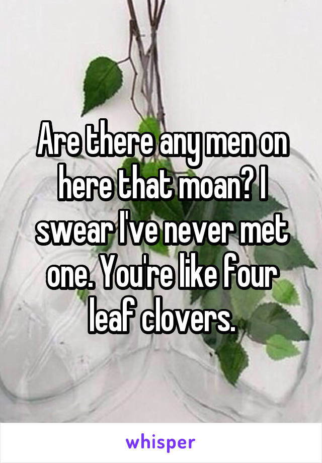 Are there any men on here that moan? I swear I've never met one. You're like four leaf clovers.