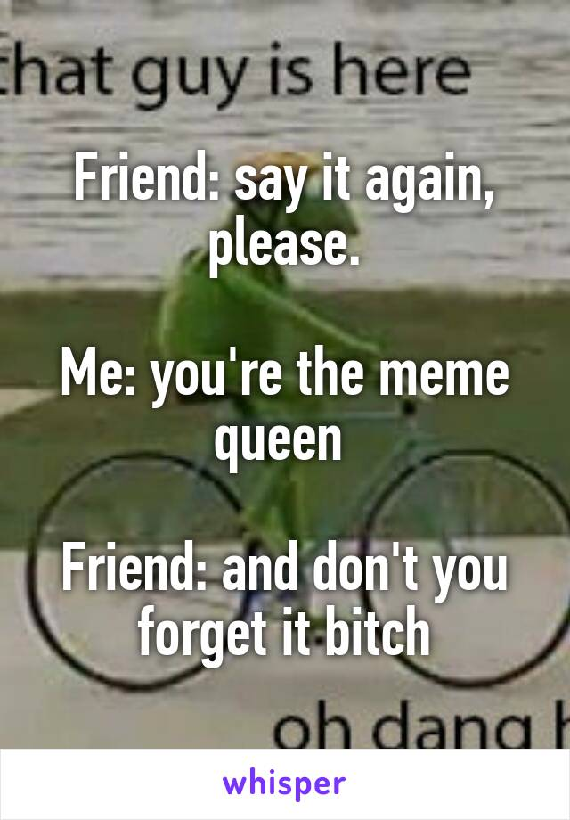 Friend: say it again, please.  Me: you're the meme queen   Friend: and don't you forget it bitch