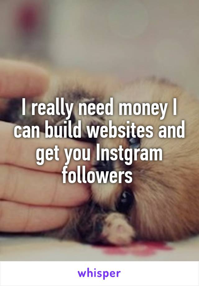 I really need money I can build websites and get you Instgram followers
