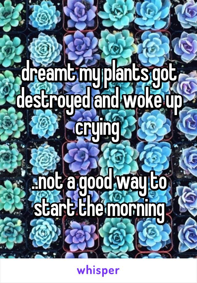 dreamt my plants got destroyed and woke up crying   ..not a good way to start the morning