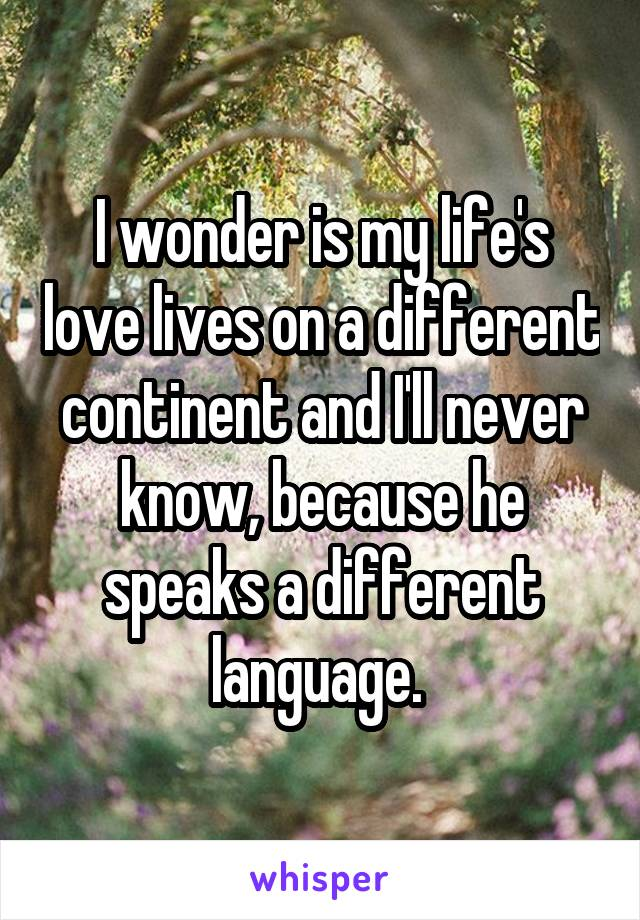 I wonder is my life's love lives on a different continent and I'll never know, because he speaks a different language.