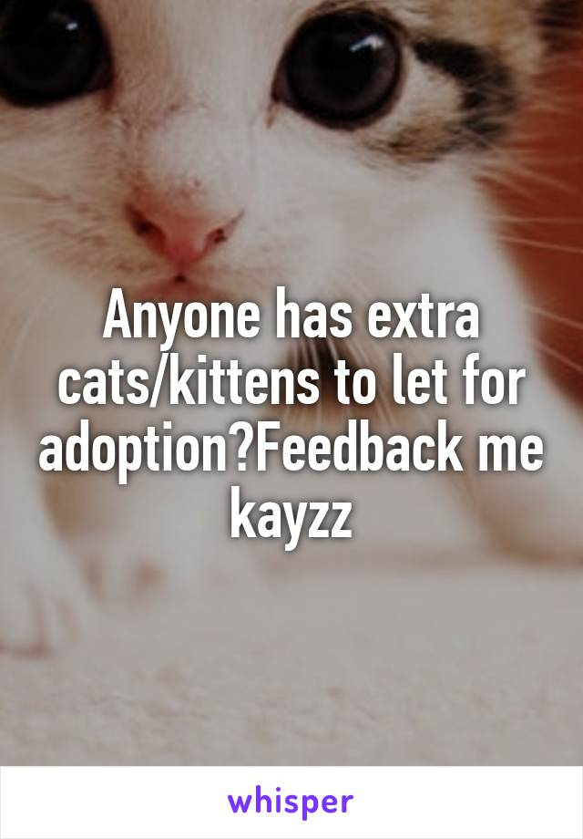 Anyone has extra cats/kittens to let for adoption?Feedback me kayzz