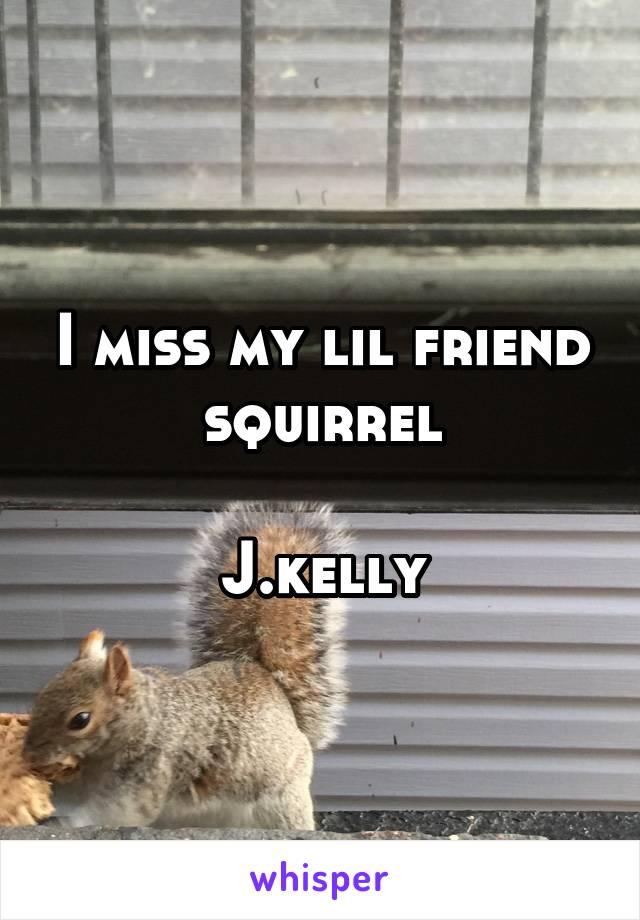 I miss my lil friend squirrel  J.kelly