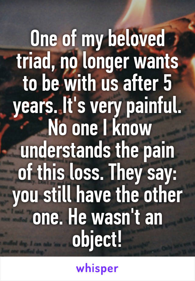 One of my beloved triad, no longer wants to be with us after 5 years. It's very painful.  No one I know understands the pain of this loss. They say: you still have the other one. He wasn't an object!