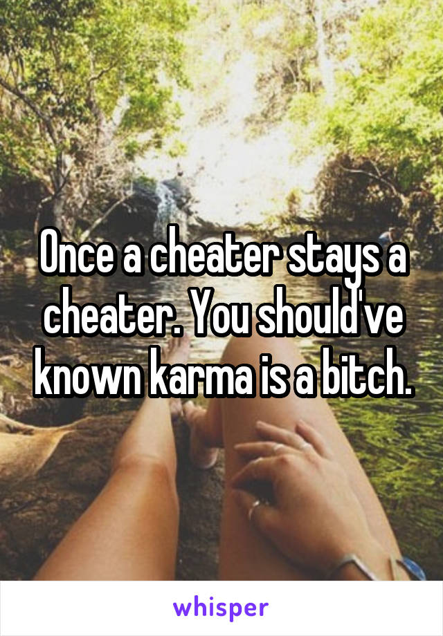 Once a cheater stays a cheater. You should've known karma is a bitch.