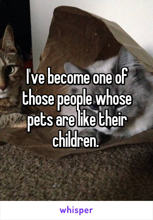 I've become one of those people whose pets are like their children.