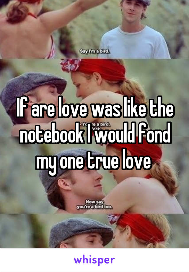 If are love was like the notebook I would fond my one true love
