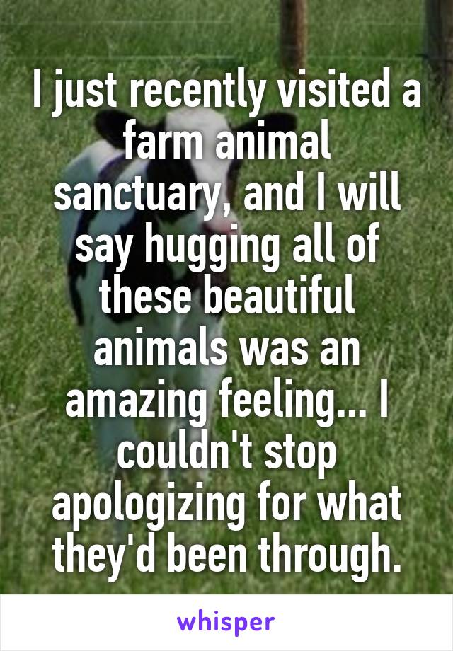 I just recently visited a farm animal sanctuary, and I will say hugging all of these beautiful animals was an amazing feeling... I couldn't stop apologizing for what they'd been through.