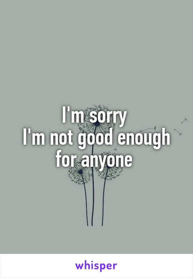 I'm sorry  I'm not good enough for anyone