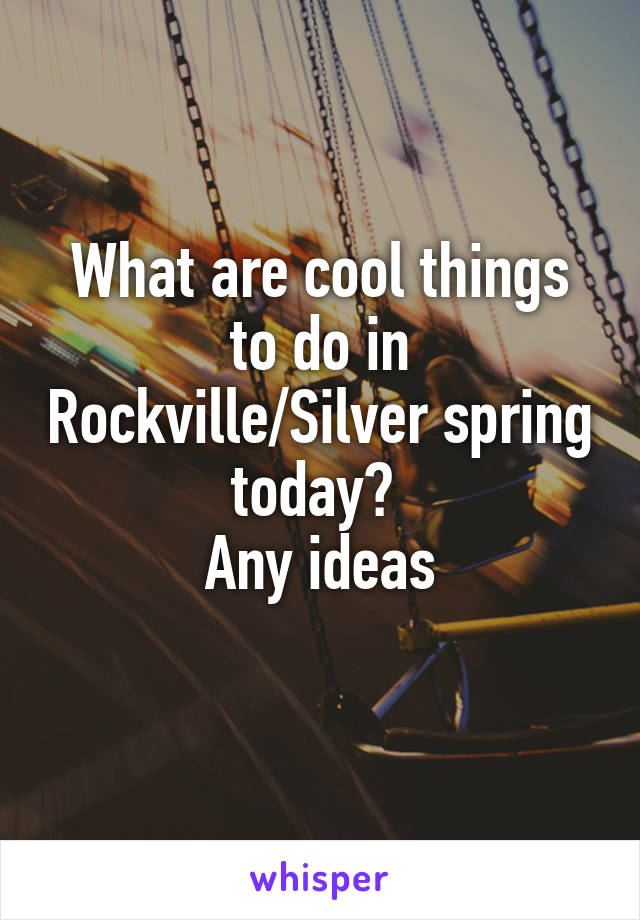 What are cool things to do in Rockville/Silver spring today?  Any ideas