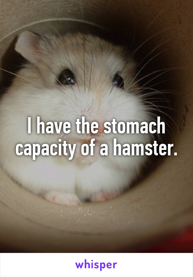 I have the stomach capacity of a hamster.