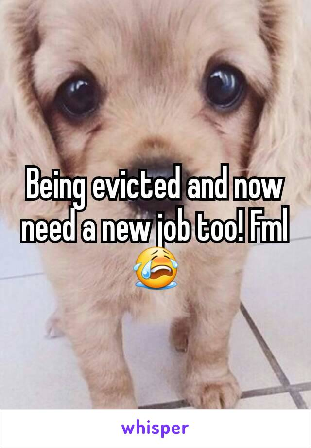 Being evicted and now need a new job too! Fml 😭