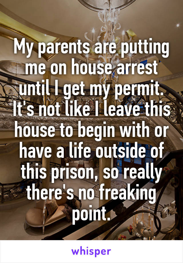 My parents are putting me on house arrest until I get my permit. It's not like I leave this house to begin with or have a life outside of this prison, so really there's no freaking point.