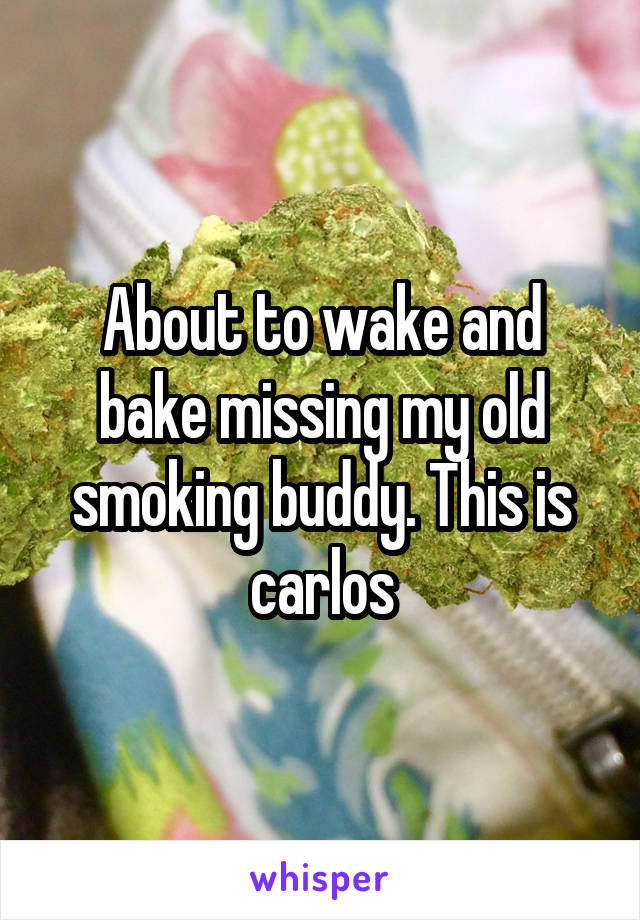 About to wake and bake missing my old smoking buddy. This is carlos