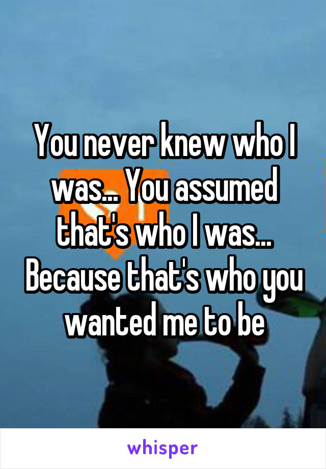 You never knew who I was... You assumed that's who I was... Because that's who you wanted me to be