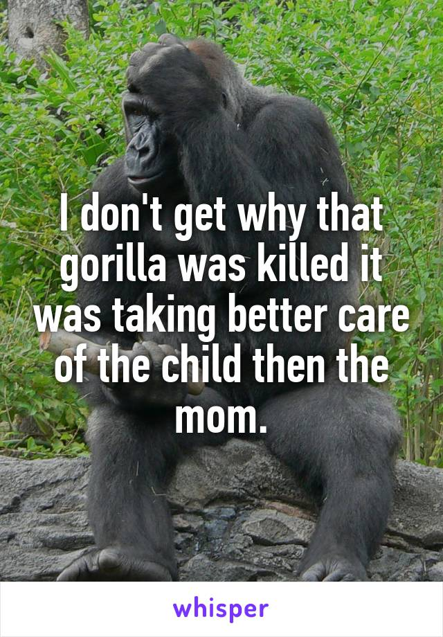 I don't get why that gorilla was killed it was taking better care of the child then the mom.