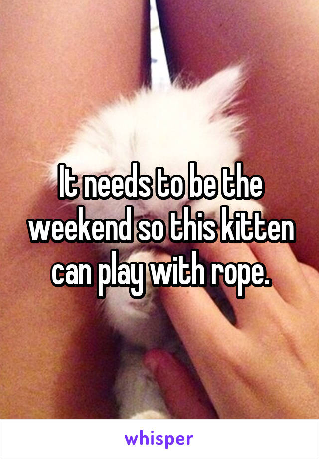 It needs to be the weekend so this kitten can play with rope.