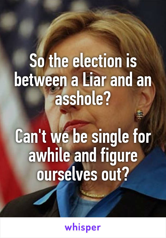 So the election is between a Liar and an asshole?  Can't we be single for awhile and figure ourselves out?