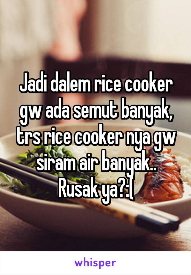 Jadi dalem rice cooker gw ada semut banyak, trs rice cooker nya gw siram air banyak.. Rusak ya?:(