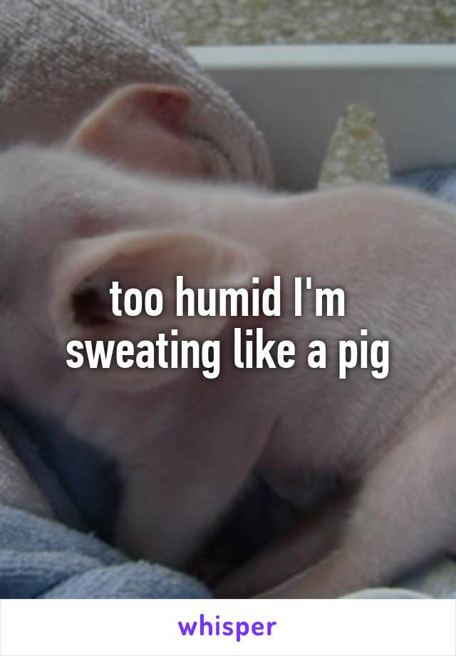 too humid I'm sweating like a pig