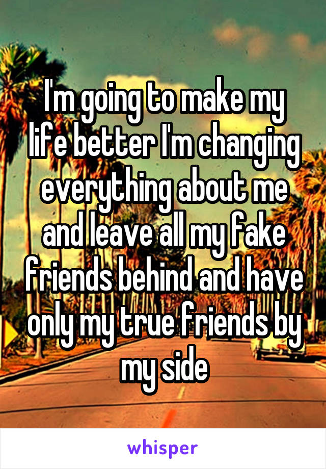 I'm going to make my life better I'm changing everything about me and leave all my fake friends behind and have only my true friends by my side
