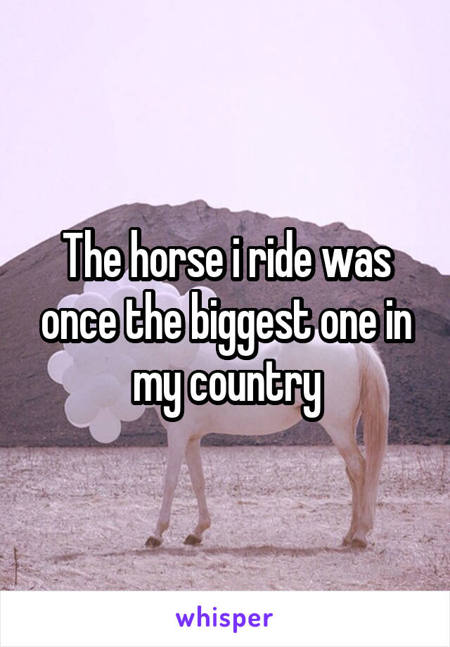 The horse i ride was once the biggest one in my country