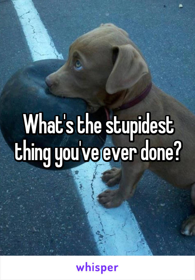 What's the stupidest thing you've ever done?