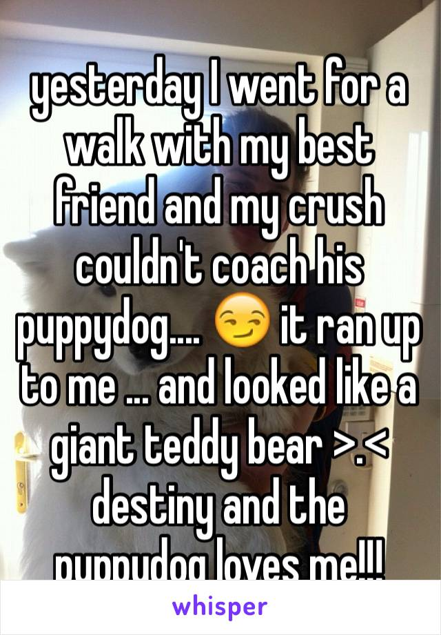 yesterday I went for a walk with my best friend and my crush couldn't coach his puppydog.... 😏 it ran up to me ... and looked like a giant teddy bear >.< destiny and the puppydog loves me!!!
