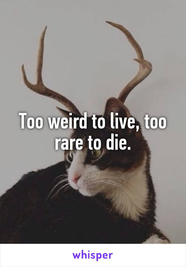 Too weird to live, too rare to die.