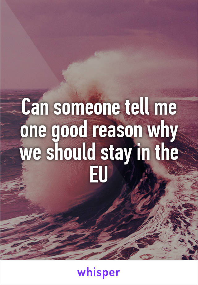 Can someone tell me one good reason why we should stay in the EU