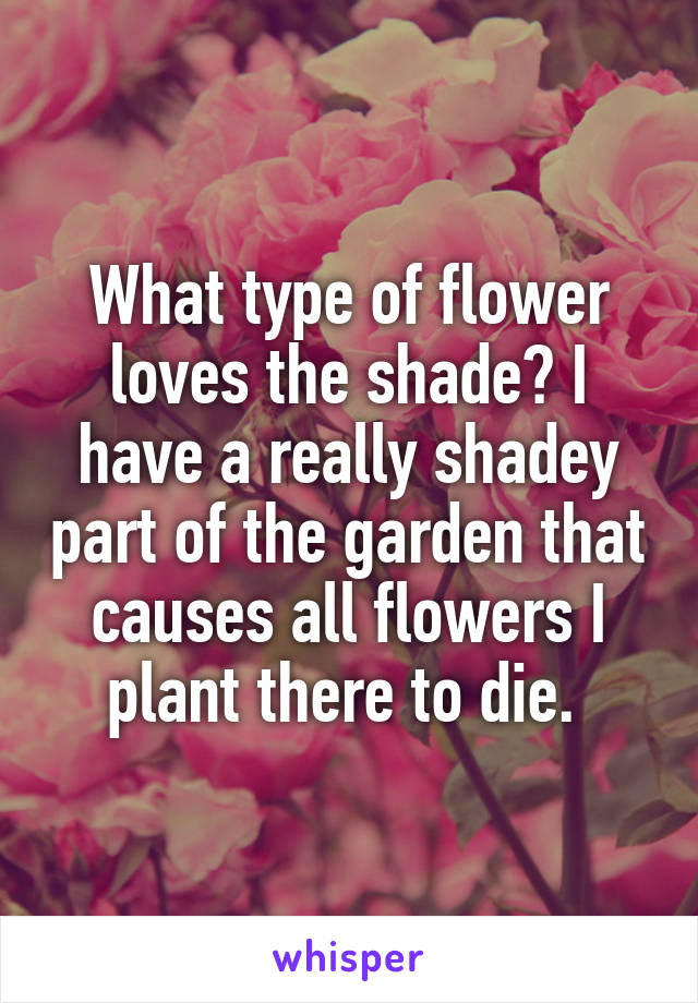 What type of flower loves the shade? I have a really shadey part of the garden that causes all flowers I plant there to die.