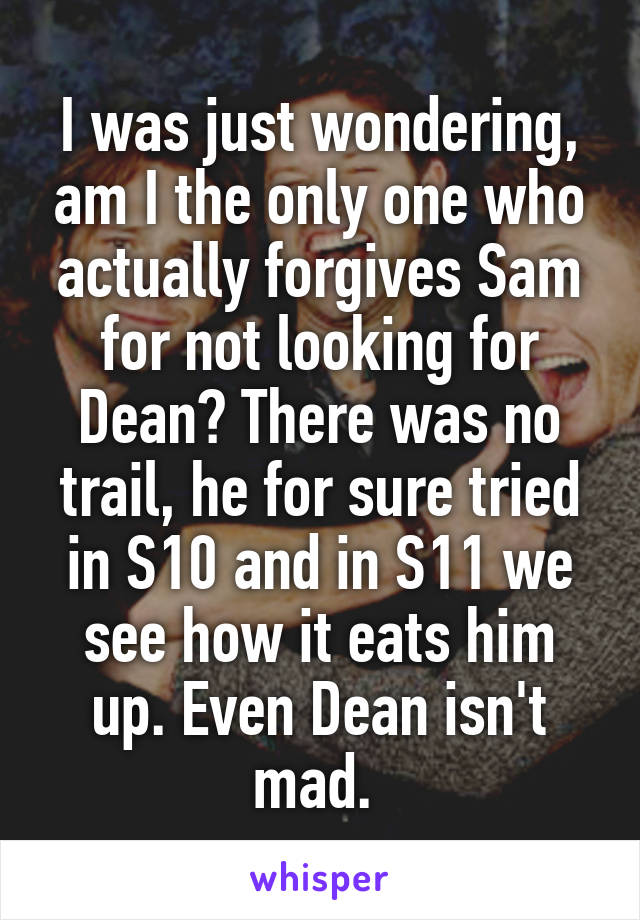 I was just wondering, am I the only one who actually forgives Sam for not looking for Dean? There was no trail, he for sure tried in S10 and in S11 we see how it eats him up. Even Dean isn't mad.