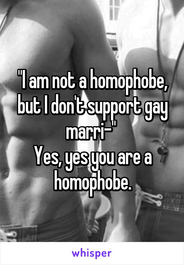 """I am not a homophobe, but I don't support gay marri-""  Yes, yes you are a homophobe."
