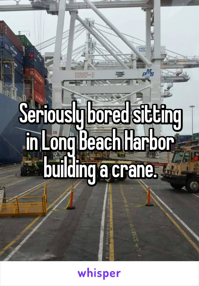 Seriously bored sitting in Long Beach Harbor building a crane.