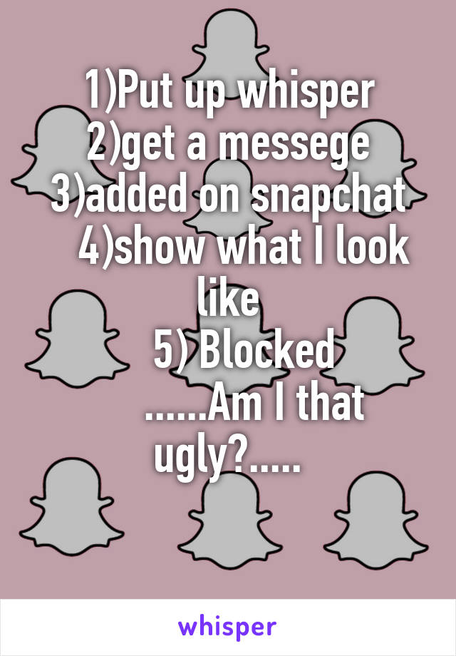 1)Put up whisper 2)get a messege 3)added on snapchat    4)show what I look like     5) Blocked       ......Am I that ugly?.....